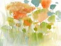 Summer Profusion Fine-Art Print