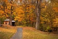 Autumn Home Fine-Art Print