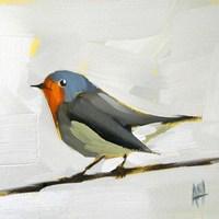 Robin on Wire Fine-Art Print