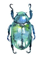 Chromatic Blue Beetle Fine-Art Print