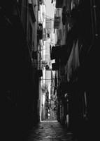 Alley Fine-Art Print