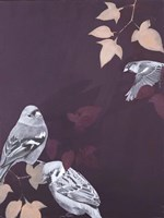 Bird 1 Fine-Art Print