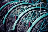 Bicycle Line Up 2 Fine-Art Print