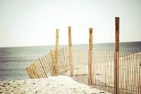Wooden Beach Fence Fine-Art Print
