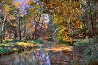 Autumn in the Afternoon Fine-Art Print
