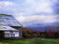Vermont Afternoon Fine-Art Print