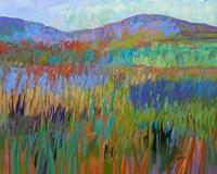Color Field No. 68 Fine-Art Print