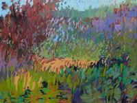 Color Field No. 72 Fine-Art Print