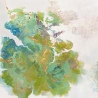 Lichen 1 Fine-Art Print