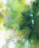 Verdant Shallows II Fine-Art Print
