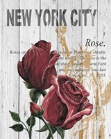 New York Roses Fine-Art Print