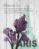 Paris Iris Fine-Art Print