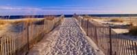 Pathway to the Beach Fine-Art Print