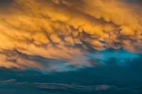 Golden Clouds Fine-Art Print