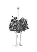 Floral Ostrich Fine-Art Print
