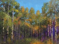 Aspen Autumn Fine-Art Print