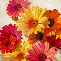 Daisies for Spring Fine-Art Print