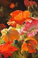 Springtime Blossoms Fine-Art Print