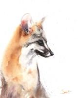 Grey Fox Fine-Art Print