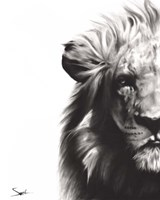 Lion II Fine-Art Print