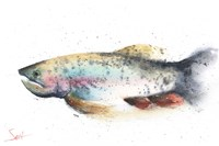 Rainbow Trout Fine-Art Print