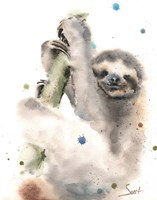 Sloth Fine-Art Print