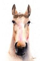 Spirit Horse Fine-Art Print