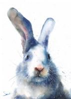 White Rabbit Fine-Art Print
