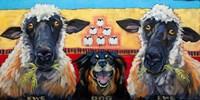 Ewe Dog Ewe Fine-Art Print