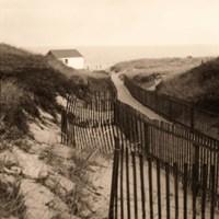 Dune Fence Fine-Art Print