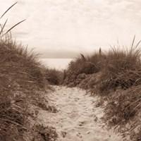 Dune Path Fine-Art Print