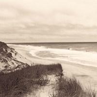 Wellfleet Dune Fine-Art Print