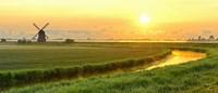 Morning Meadow Fine-Art Print