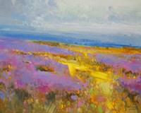 Field of Lavenders 2 Fine-Art Print