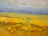 Field of Yellow Flowers Fine-Art Print