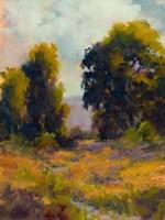 Eucalyptus Path Fine-Art Print