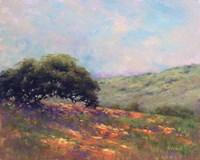 Poppy Hill Fine-Art Print