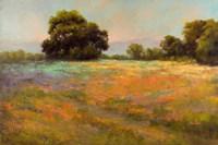 Spring Meadow Fine-Art Print