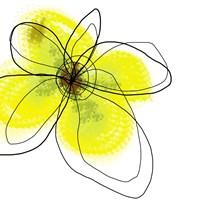 Yellow Petals Four Fine-Art Print