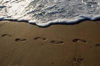 Footprints Fine-Art Print