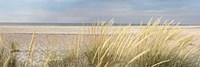 Island Sand Dunes Fine-Art Print