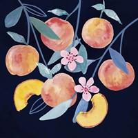 Fresh Fruit IV Fine-Art Print