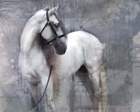 Horse Exposures II Fine-Art Print