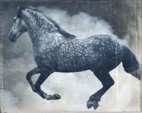 Horse Exposures III Fine-Art Print