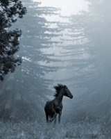Horse in the Trees I Fine-Art Print
