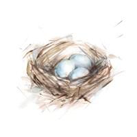 Bird Life III Fine-Art Print