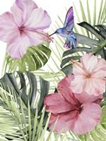 Hibiscus & Hummingbird I Fine-Art Print