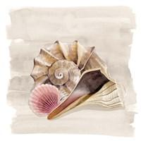 Ocean Keepsake II Fine-Art Print