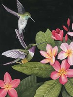 In the Plumeria I Fine-Art Print