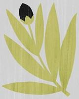 Flower Cutting I Fine-Art Print